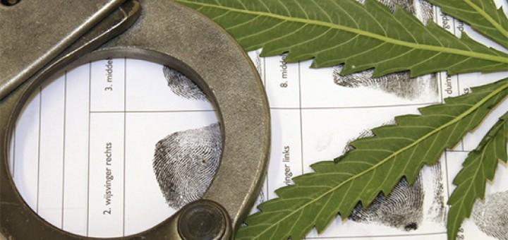 As drogas e a lei
