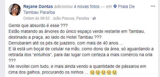 Hotel Tambaú derrubada de árvores02