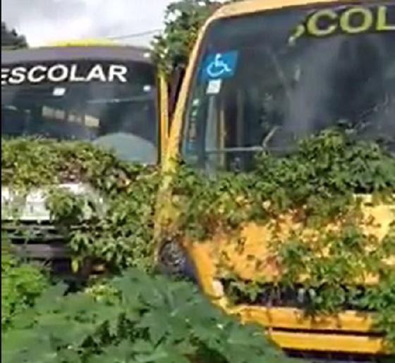 Video ônibus escolar abandonados pelo Governo