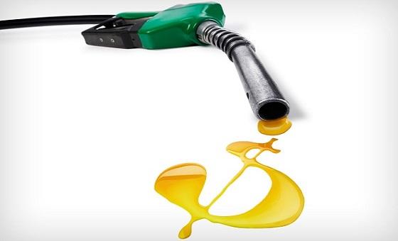 gastos com combustíveis